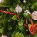 Božićna drvca ponuda