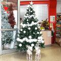 Božićna drvca sa snijegom