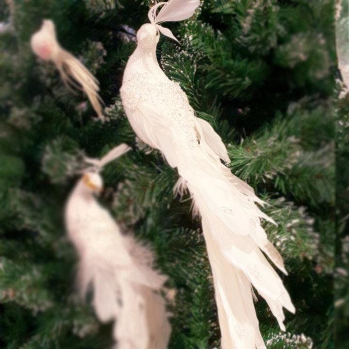 dekoracija za bor ptica
