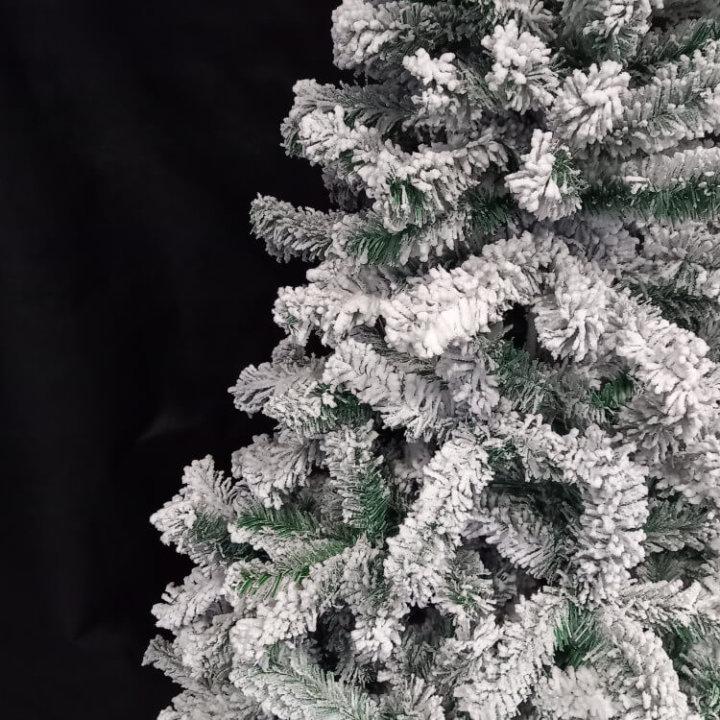 Drvce sa snijegom
