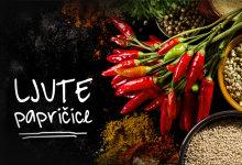 ljute papričice recepti i vrste